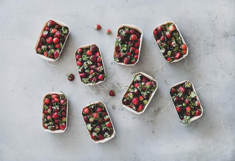 Świeże ogrodowe truskawki w życzliwych bezpłatnych pudełkach nad popielatym tłem zdjęcie stock