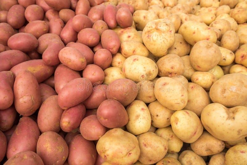 Świeże organicznie młode białe i czerwone grule sprzedawali na rynku zdjęcia stock