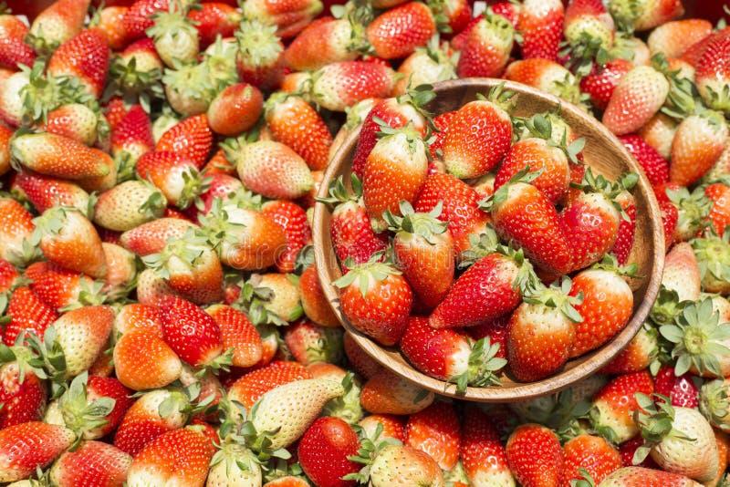 Świeże organicznie truskawki - Fragaria obrazy royalty free