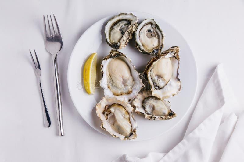 Świeże ostrygi słuzyć w bielu talerzu z pokrojonym cytryna na białym tablecloth obraz royalty free