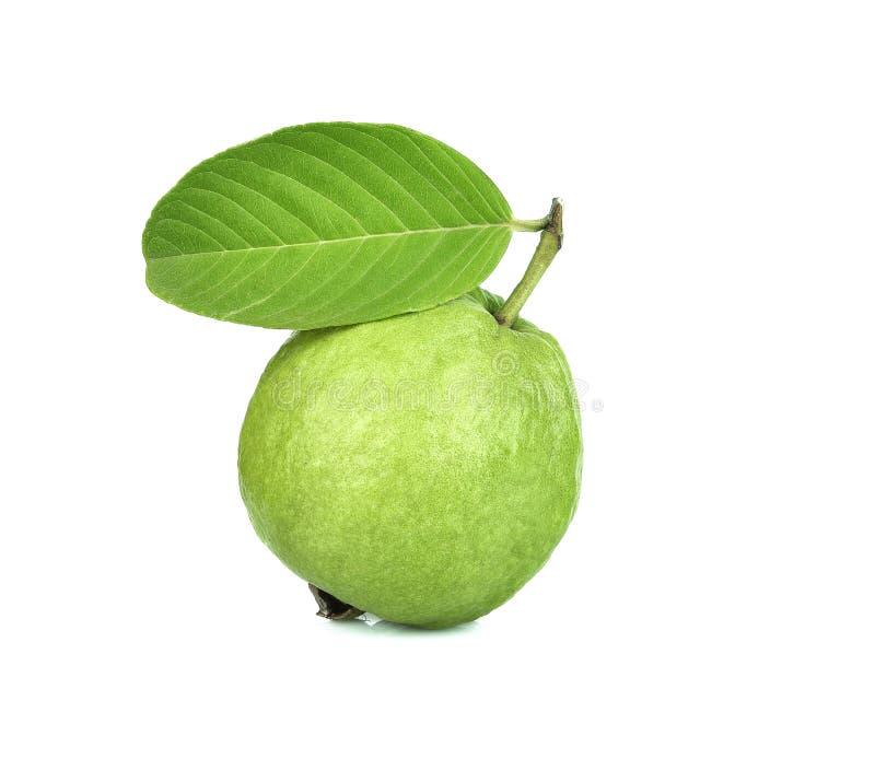Świeże owoce guawy wyizolowane na białym tle obrazy stock
