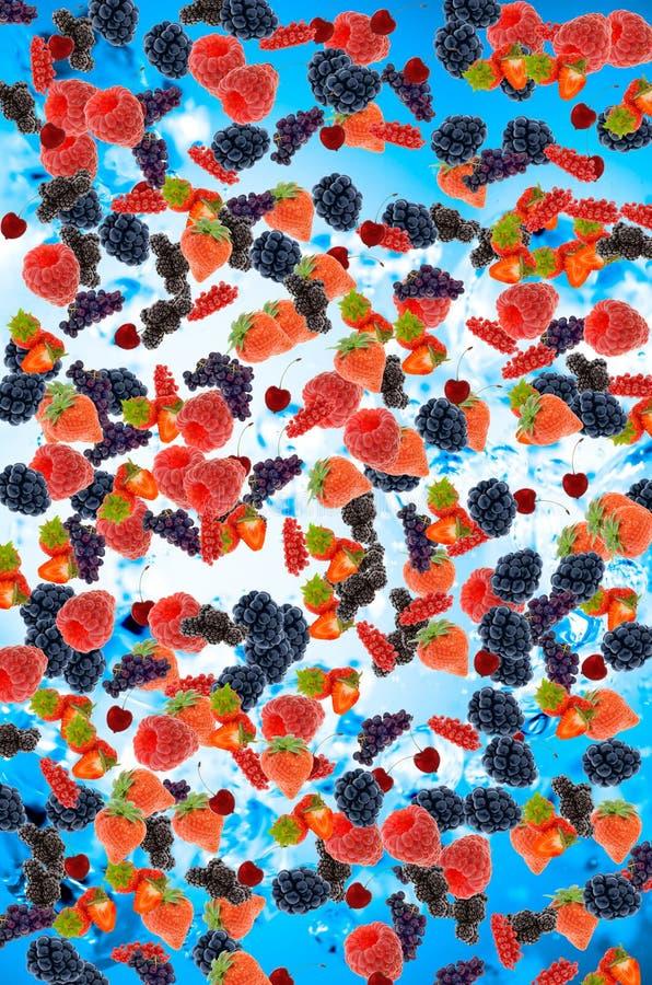 świeże owoce lata zdjęcie stock