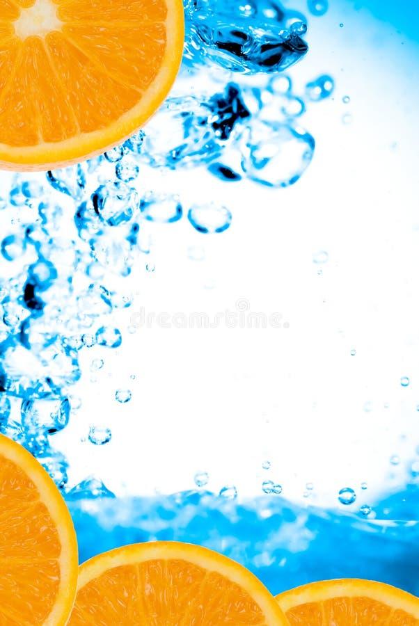 świeże pomarańcze wody fotografia royalty free