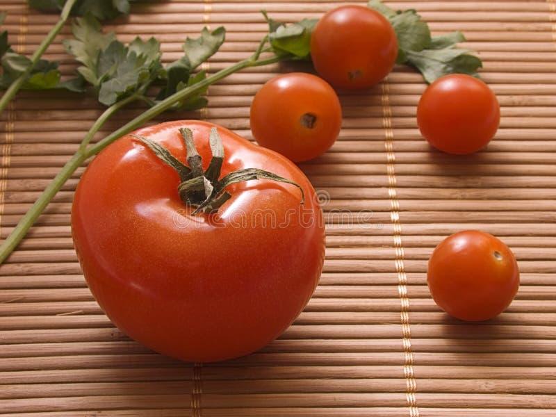 świeże pomidory i obrazy stock
