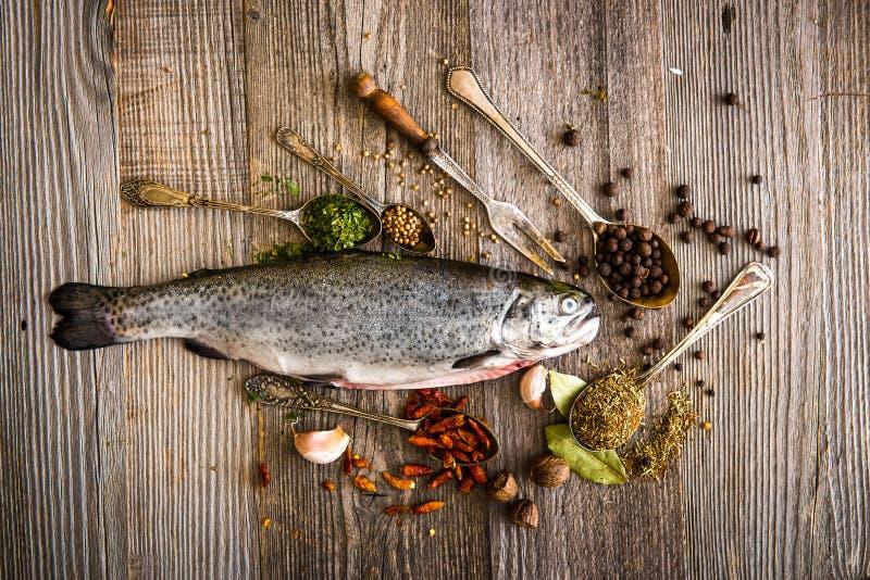 Download Świeże Pstrągowe Pikantność Na Stole Zdjęcie Stock - Obraz złożonej z posiłek, rozwidlenie: 53790998