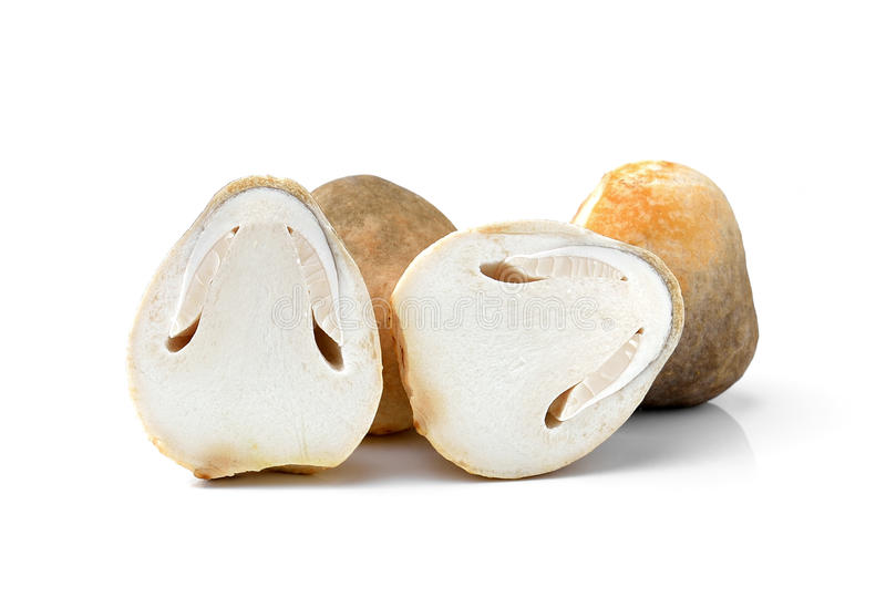 Świeże ryżowe słomiane pieczarki na białym backgr zdjęcie royalty free