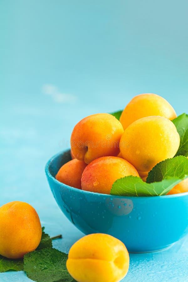 Świeże słodkiej pomarańcze morele w błękitnym pucharze zdjęcie royalty free