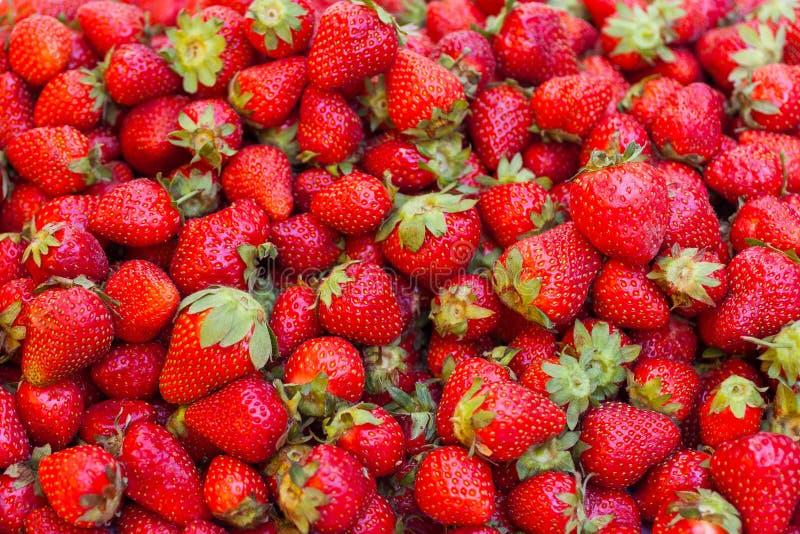 świeże truskawki kolorowe tło zdjęcia stock