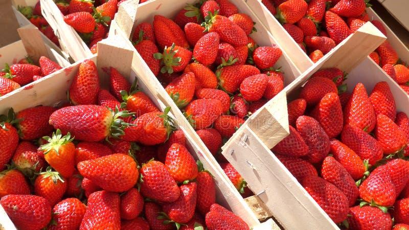 Świeże truskawki w drewnianych pudełkach przy rolnikami wprowadzać na rynek, gotowy dla sprzedaży, zdjęcia stock