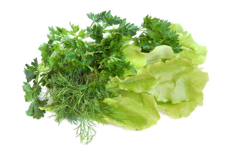 świeże warzywa smakowite zdjęcie royalty free