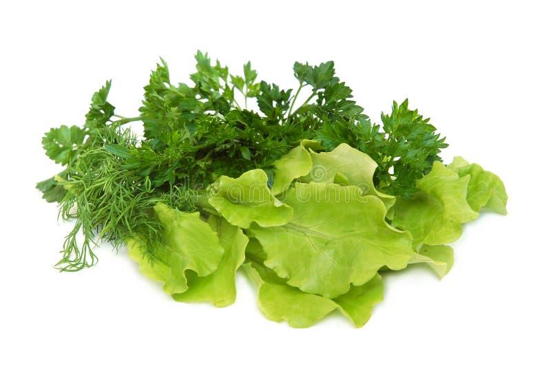 świeże warzywa smakowite obrazy royalty free