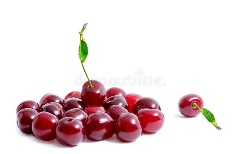Świeże wiśnie odizolowywać na białym tle Jeden wiśnia kłama oddzielnie od innych wiśni Lato jagody zdrowa żywność zdjęcia royalty free