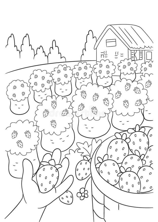 Świeże zbieranie truskawek w Farm Digital Line Art and Lstration ilustracja wektor