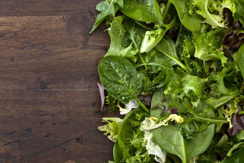 świeże zieloną sałatkę obrazy stock