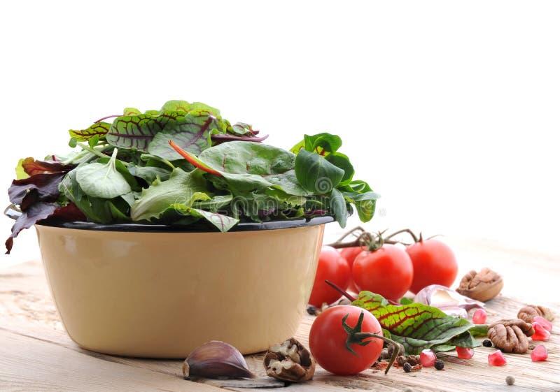 świeże zieloną sałatkę Warzywa i pikantność dla sałatki fotografia royalty free