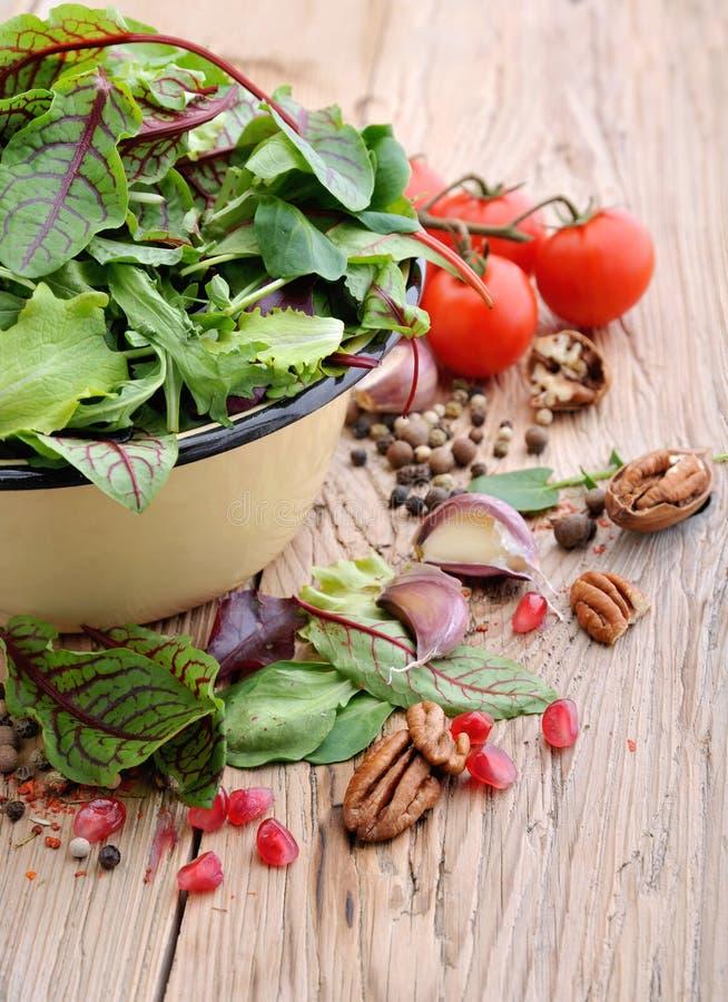 świeże zieloną sałatkę Warzywa i pikantność dla sałatki obraz stock