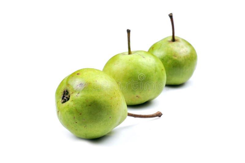 świeże zielone bonkrety zdjęcie stock