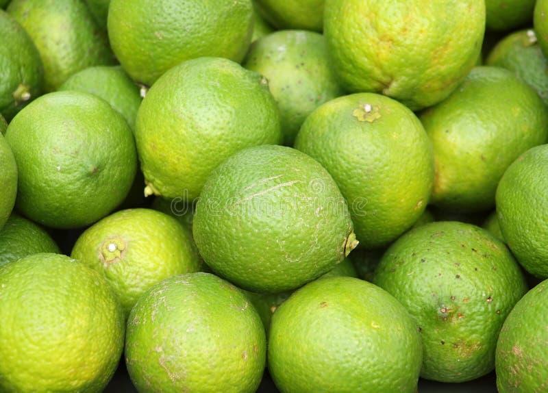 Świeże Zielone cytryny obraz royalty free
