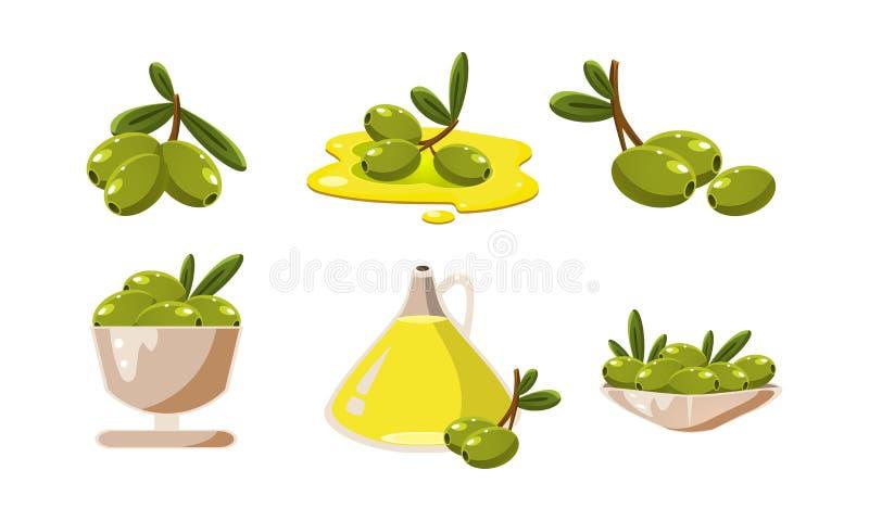 Świeże zielone oliwki i oleju set, zdrowego organicznie produktu wektorowa ilustracja na białym tle royalty ilustracja
