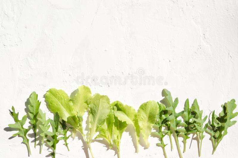 Świeże zielone organicznie rośliny, liście dla sałatki Rząd zdrowi składniki dla kulinarnego dieta posiłku zdjęcia stock