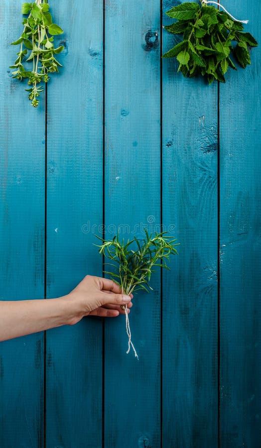 świeże zioła obrazy stock