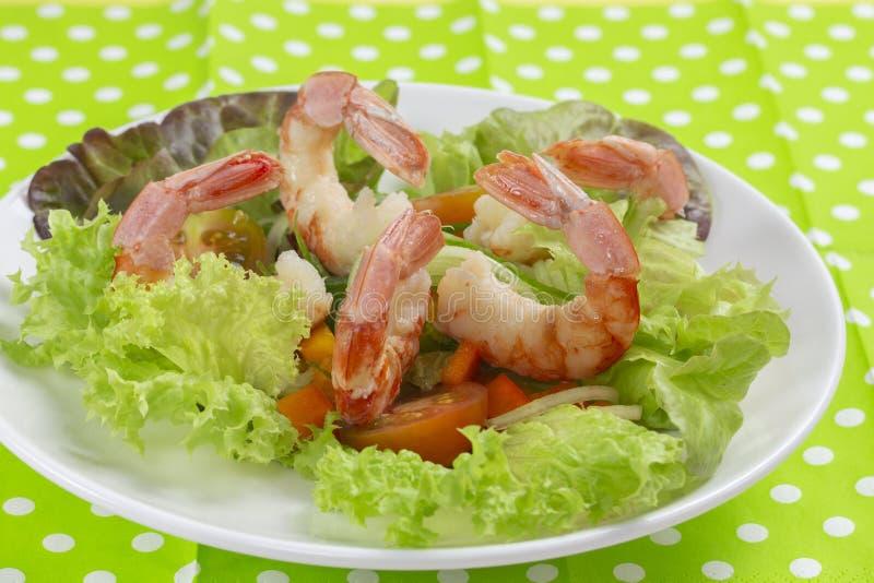 Świeżego warzywa sałatka z krewetkową krewetką Gotowane obrane bezgłowe garnele obrazy royalty free