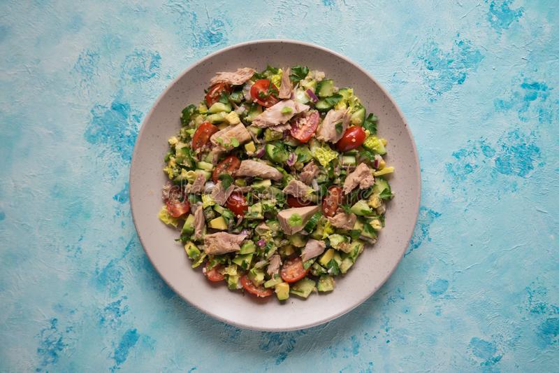 Świeżego warzywa sałatka z tuńczyków plasterkami Odgórny widok zdjęcie royalty free