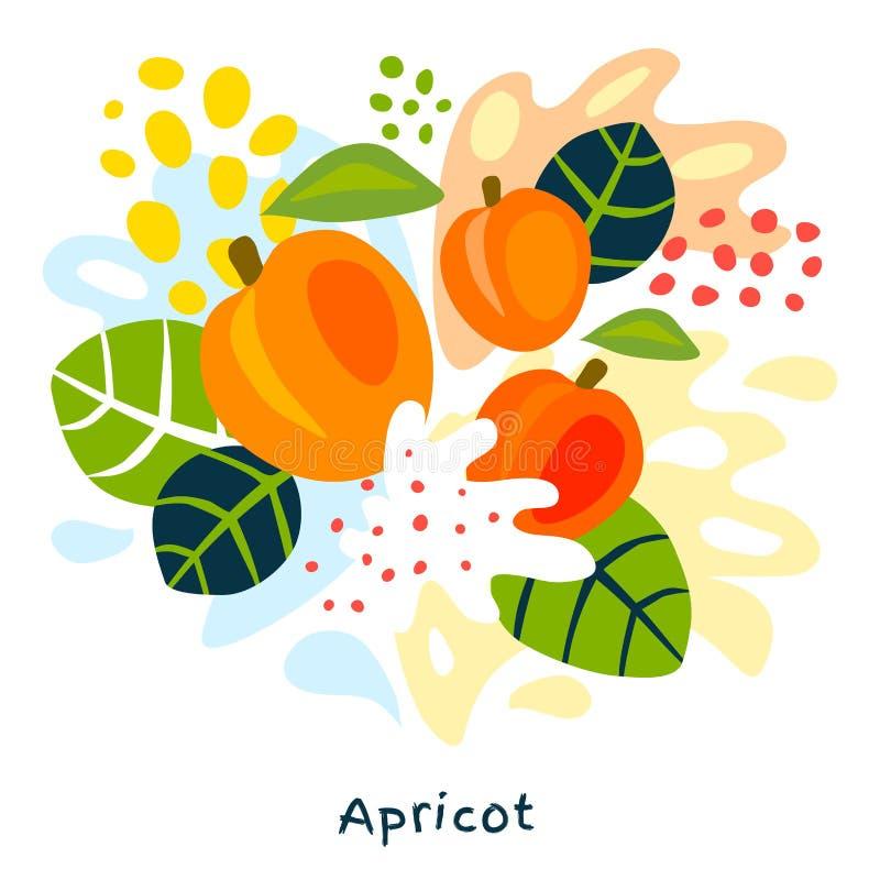 Świeżej morelowej jagodowej jagod owoc soku pluśnięcia żywności organicznej soczyste morele splatter na abstrakcjonistycznym tle royalty ilustracja