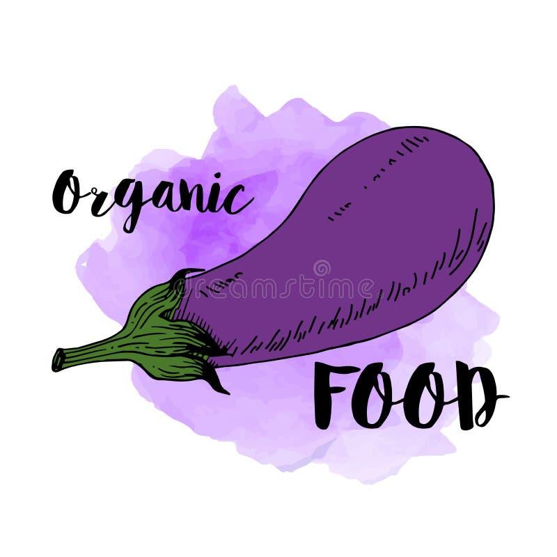 Świeżej oberżyny jarzynowa ikona na akwareli tle, tekst żywność organiczna royalty ilustracja