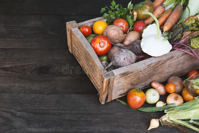 Świeżej odżywki warzyw organicznie tło Podtrzymywalny uprawia ziemię rolnictwo rynek obrazy royalty free