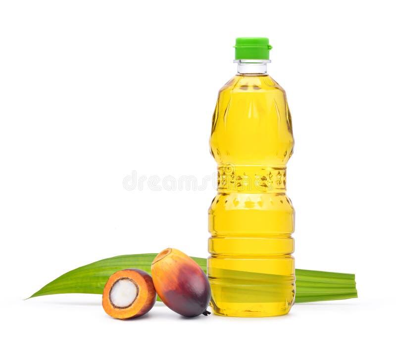 Świeżo Nafcianej palmy cięcie w połówce z kulinarnym olejem palmowym w zwierzęciu domowym i ziarno obraz stock