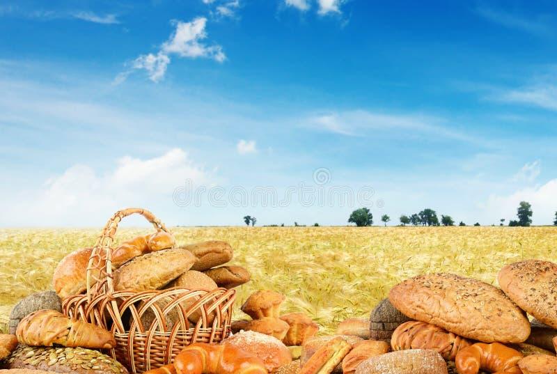 Świeżo piec chleby na tła pszenicznym polu zdjęcia stock