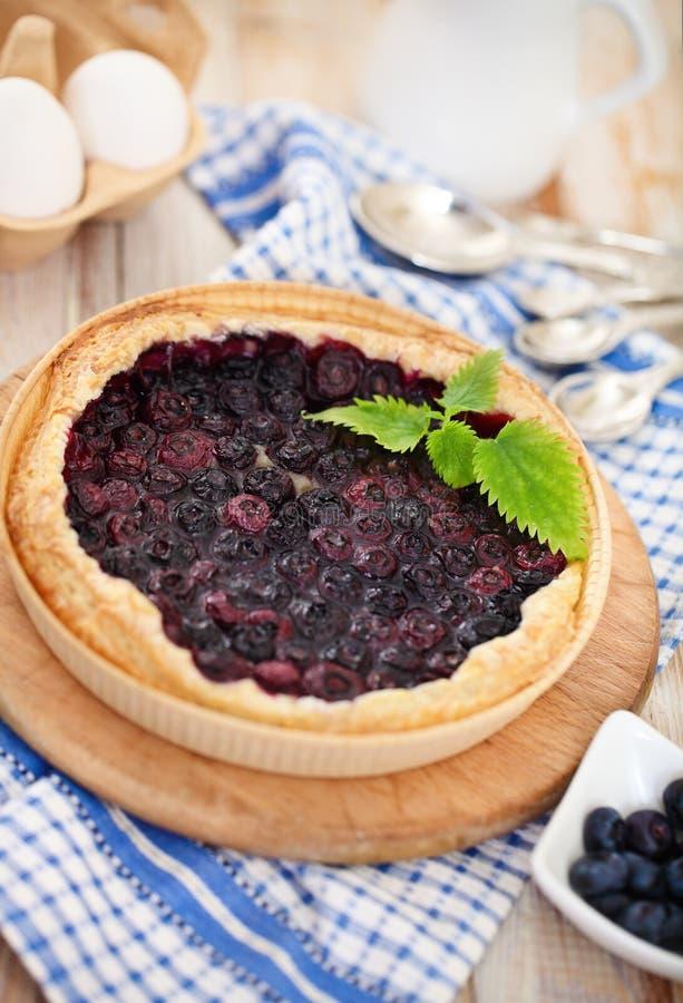 Świeżo piec domowej roboty czarna jagoda kulebiak fotografia royalty free