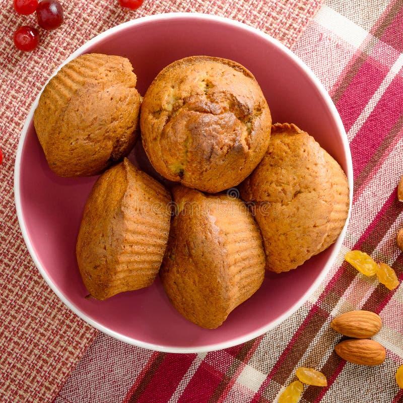 Świeżo piec domowej roboty muffins z cranberry dokrętkami w różowym pucharze i rodzynkami obrazy royalty free