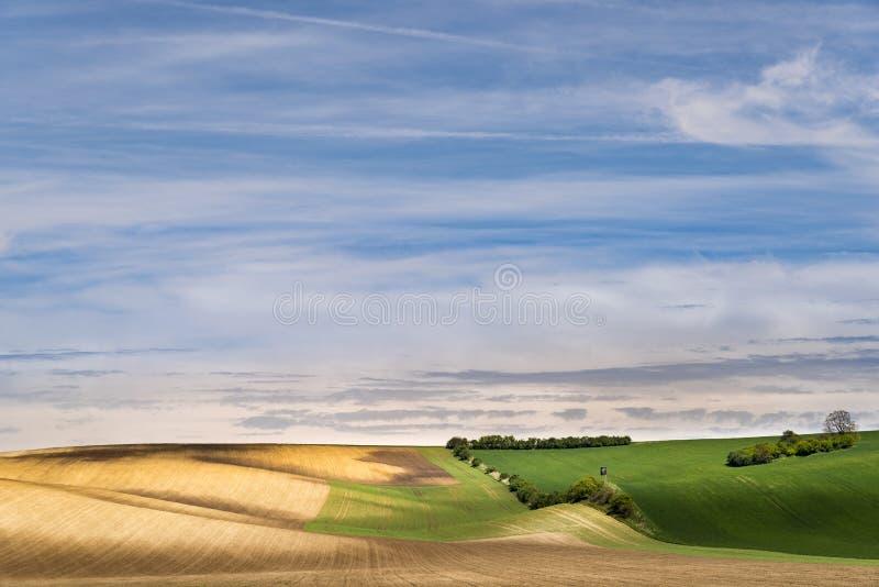 Świeżo siający rolnictwo mlejący z falistymi łąkami obrazy stock