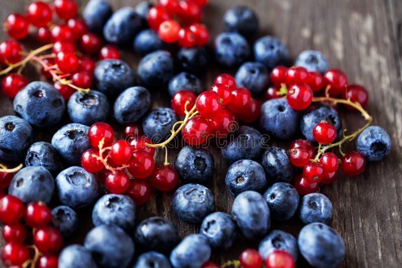 Świeżo ukradzione czarne jagody i rodzynek obrazy royalty free