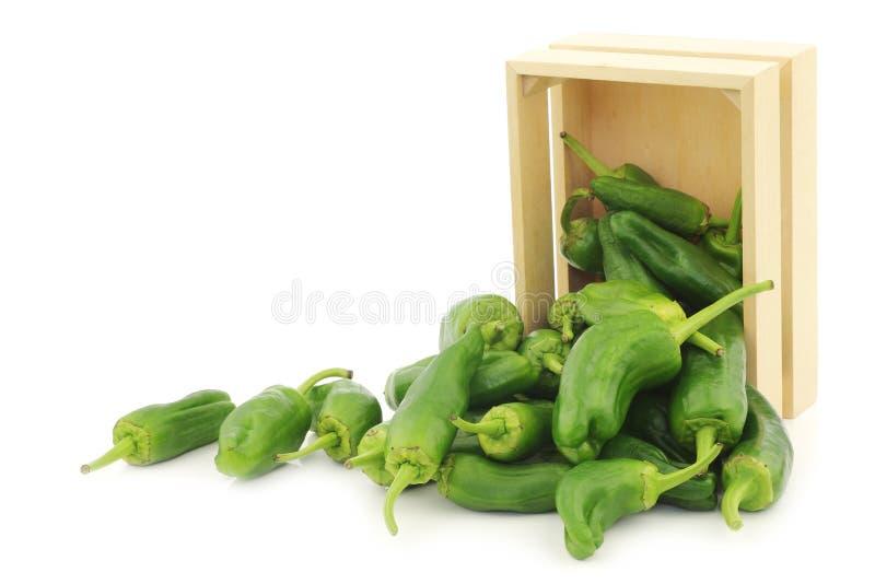 Świeżo zbierający jalapeno pieprzy w drewnianej skrzynce obraz royalty free