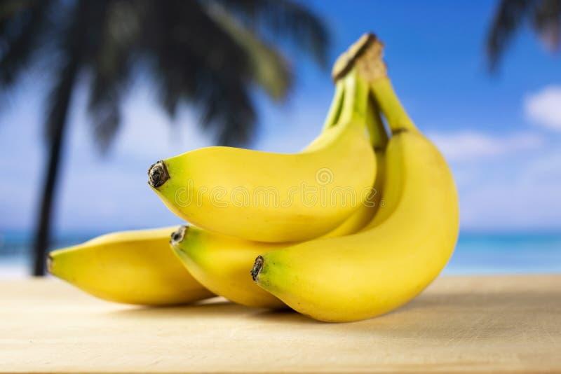 Świeży żółty banan z palmy plażą behind fotografia royalty free