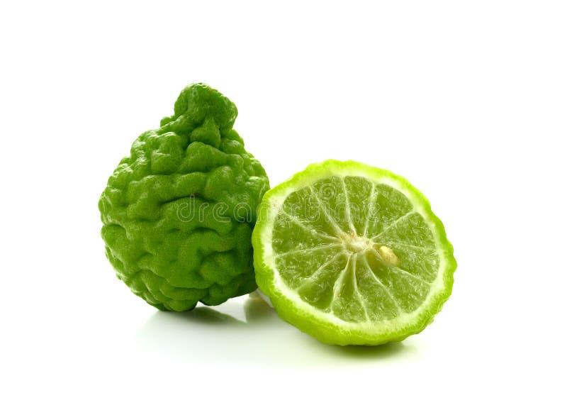 Świeży bergamotowy ziele Na Biały Tle kafra Wapno zdjęcia stock