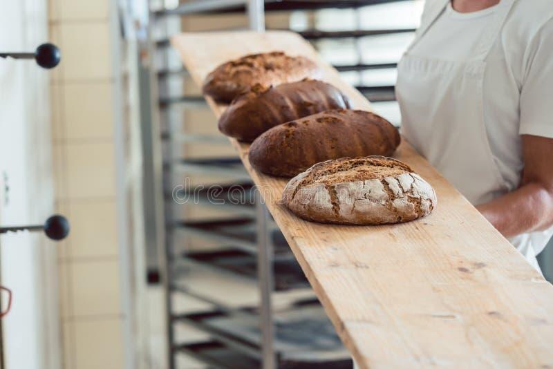 Świeży chleb na desce w bakehouse piekarnia obraz royalty free