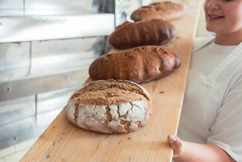 Świeży chleb na desce w bakehouse piekarnia zdjęcie stock