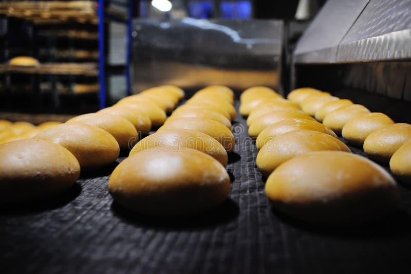 Świeży chleb z piekarnika zdjęcia royalty free