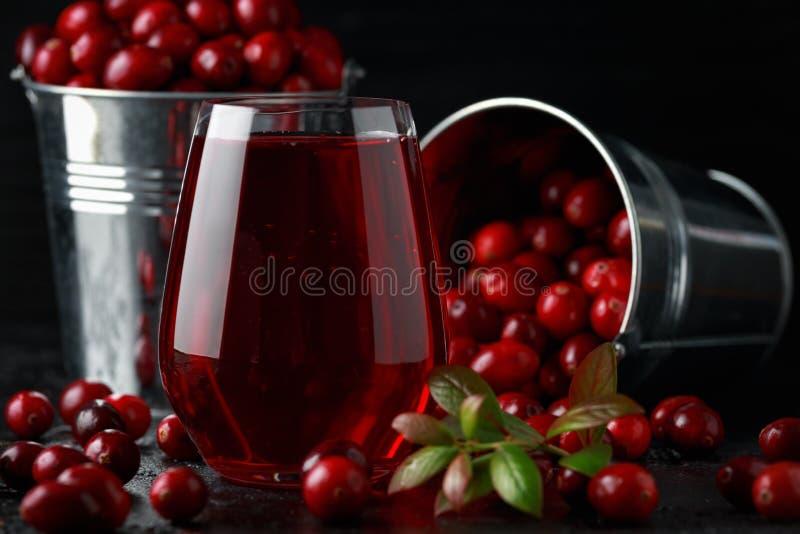 Świeży Cranberries sok w szkle Świeżo robić, organicznie, wieśniaka styl fotografia royalty free