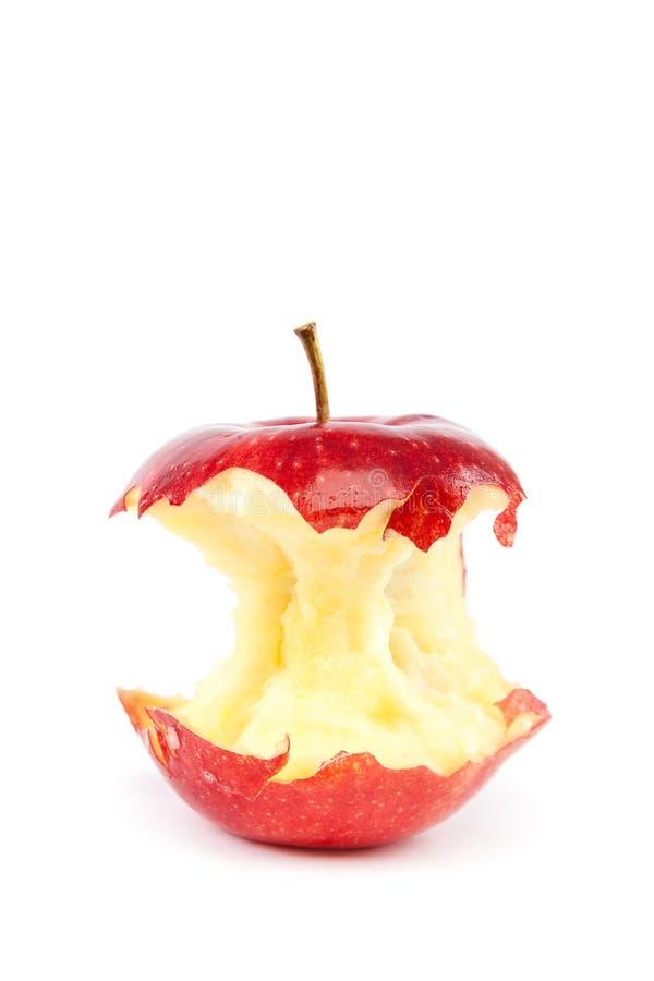 Świeży czerwony jabłczany sedno na białym tle obraz royalty free
