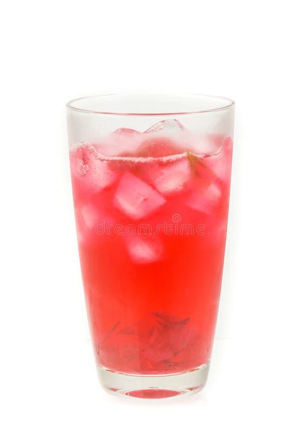 Świeży czerwony roselle i sok odizolowywający na bielu zdjęcia stock