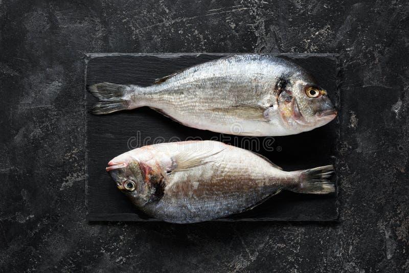 Świeży denny leszcz lub dorado ryba na łupkowym tle zdjęcie royalty free