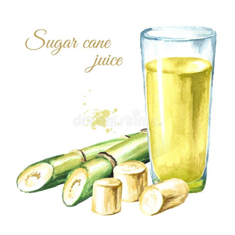 Świeży gniosący trzcina cukrowa sok w pije szkle z rżniętą kawałek trzciną i Akwareli ręka rysująca ilustracja odizolowywająca na ilustracja wektor
