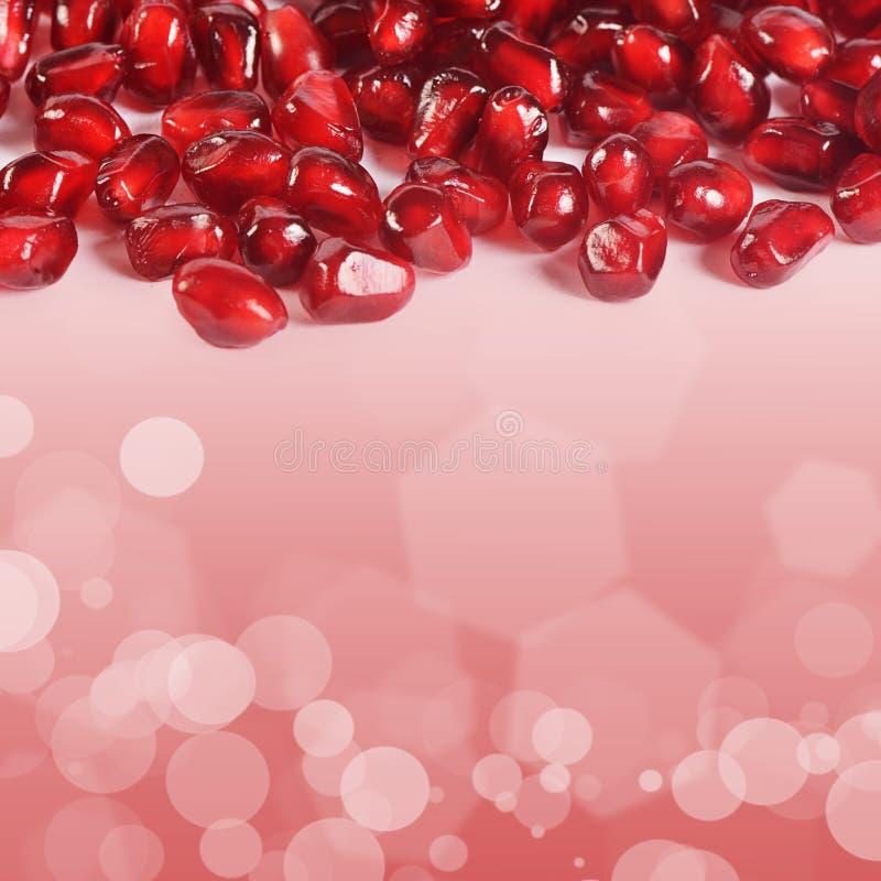 Świeży granatowiec jako tło zdjęcia royalty free