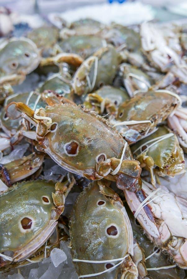 Świeży i surowy THREE-SPOT PŁYWACKI krab w owoce morza rynku obrazy stock