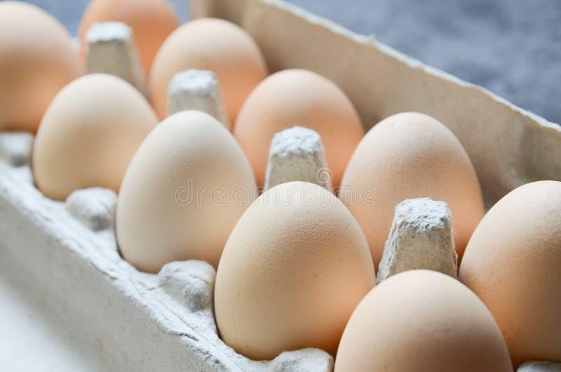 Świeży jajka tło fotografia royalty free